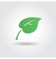 Eco icon with green leaf bio sign vector image vector image