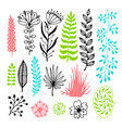 floral set with flowers and leaves for design vector image vector image