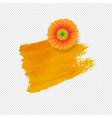 orange blot with gerber transparent background vector image vector image