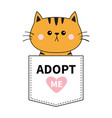 orange cat sitting in the pocket adopt me pink vector image vector image