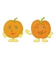 Pumpkins character vector image