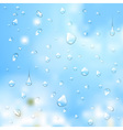 Summer background water drops vector image vector image