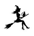 Witch flies to celebrate sabbath
