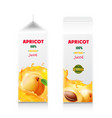 apricot juice packaging design carton box vector image vector image