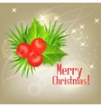 background with Christmas holly vector image vector image