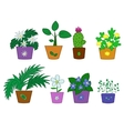 Cartoon flowers in pots vector image