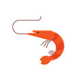 cartoon shrimp icon vector image