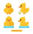duck icon duck design vector image
