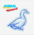 farm animal duck in sketch style on colorful vector image vector image