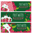 Set of banners with bright fruit water in mason vector image vector image