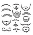 sketch mustache drawing facial hair isolated vector image