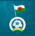 wales flag pinned to a soccer ball european vector image vector image