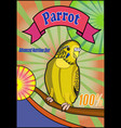 banner food for parrots vector image vector image