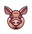 image of swine head vector image vector image