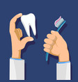 toothbrush and tooth vector image