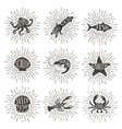 set of vintage handdrawn sea animals with sun rays vector image