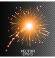 Firework on Transparent Background vector image