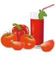 group with tomatoes and glass vector image vector image
