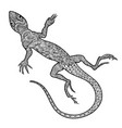 lizard reptile isolated patterned ornamental vector image