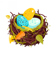Nest with colorful eggs and dry leaves vector image