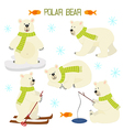 set of isolated polar bear vector image vector image
