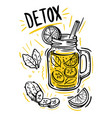 sketch detox water vector image