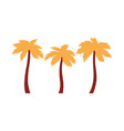 three palm trees icon with orange leaves in flat vector image