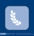 wheat spike ears icon vector image vector image