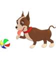 Cartoon character bulldog puppy playing with a vector image