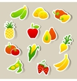 Set of fruit and vegetables stickers vector image