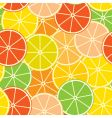 abstract citrus background vector image vector image