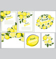 abstract lemon natural background colection set vector image