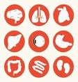 Body icon vector image vector image