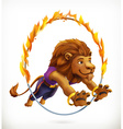 Circus lion jumping through a flaming hoop fire vector image vector image