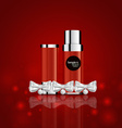 Cosmetics packaging Holiday Gift vector image vector image