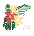 exotic lily flowers tropical greenery bouquet vector image