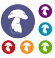 good mushroom icons set vector image vector image