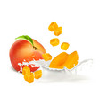 peach slices falling to milk vector image vector image
