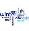 word cloud winter vector image vector image