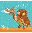 Cute cartoon owl with wooden toy airplane vector image vector image