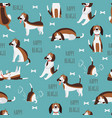 cute childish seamless pattern with beagle dog vector image vector image