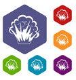 flame and smoke icons set hexagon vector image vector image