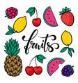 set fruits symbol summer fruits hand drawn vector image