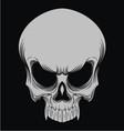 Skulls Head vector image vector image