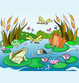 wetland landscape with animals for adults vector image vector image