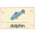 wordcard template for word dolphin vector image