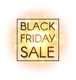 Black Friday sale banner on explosion background vector image