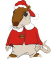 House rat vector image