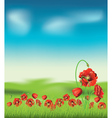 Poppy with Grass4 vector image vector image
