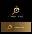 search star dream gold logo vector image